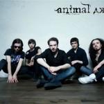 «Я не здамся без бою» исполнили Animal Jazz в Москве